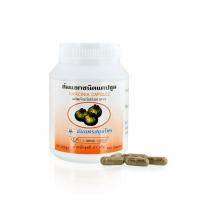 Garcinia capsule Гарциния камбоджийская для похудения 100 капсул 500 мг